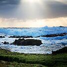 Sprays Point,Mornington Peninsula by Rosina  Lamberti