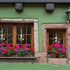 Decorated Windows and Lamp by Yair Karelic