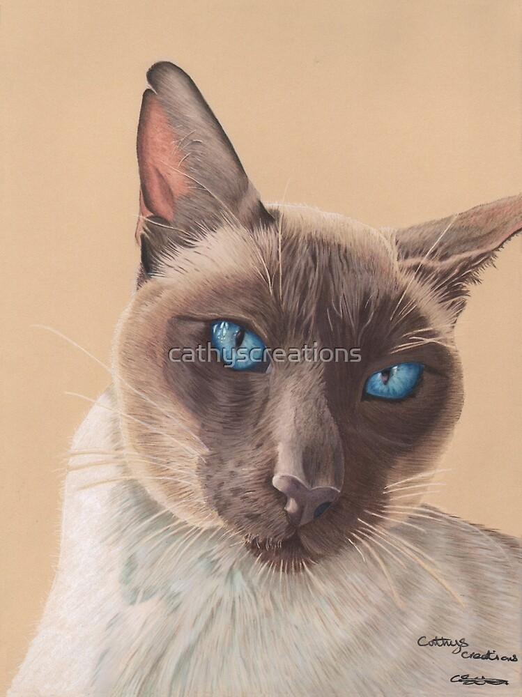 A Siamese cat by cathyscreations