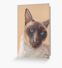 A Siamese cat Greeting Card