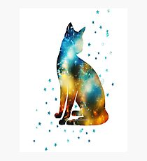 Space Cat on the Milky Way, Galaxy, Kitty, Star Photographic Print