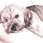 Relaxing Dog von Nicole Zeug