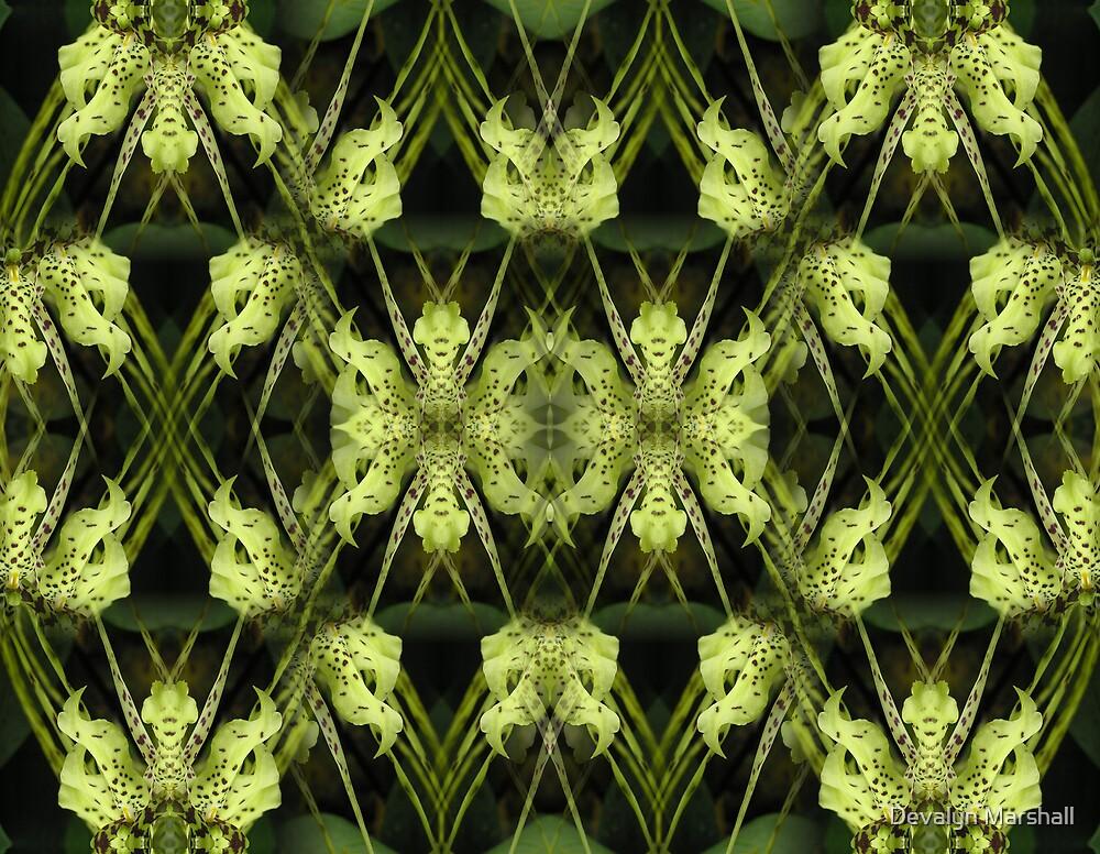 Organic Design  by Devalyn Marshall