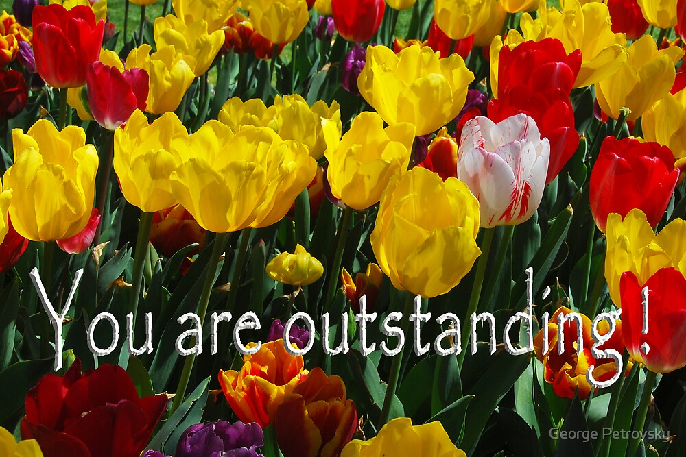 You are outstanding! by George Petrovsky