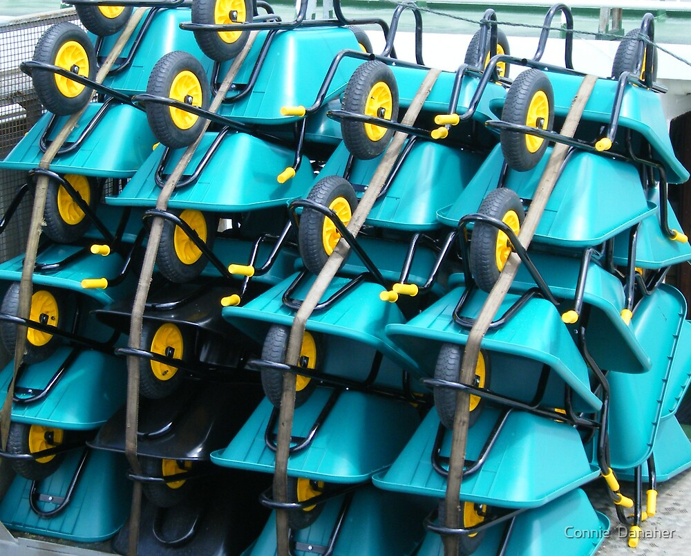 Wheelbarrows by Connie  Danaher