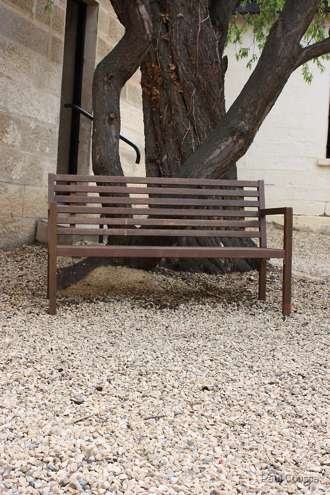 Bench Under An Almond Tree by Paul Coussa