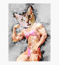 Body Builder Cat Photographic Print
