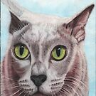Harry the Burmese cat by cathyscreations