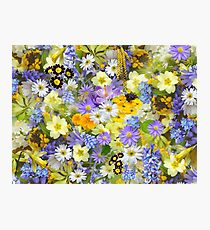 Bed of Flowers Photographic Print