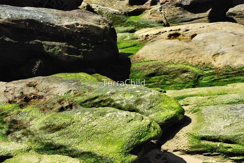 Greenage by TerraChild