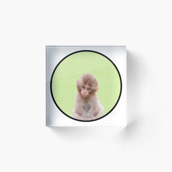 Peek-a-boo Animals - Monkey Acrylic Block