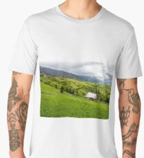 storage of firewood on hillside meadow in mountain Men's Premium T-Shirt