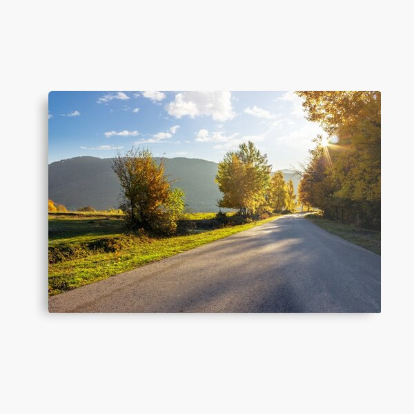road going to mountains Metal Print