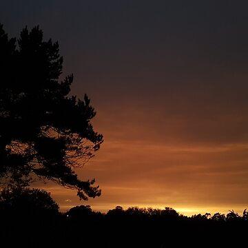 Orange sky//Red sun by Bluecloud184