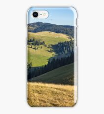 conifer forest  in mountains at sunrise iPhone Case/Skin