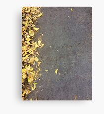 Autumn Color Leaves On Asphalt Canvas Print