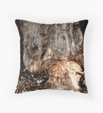 the trunk Throw Pillow