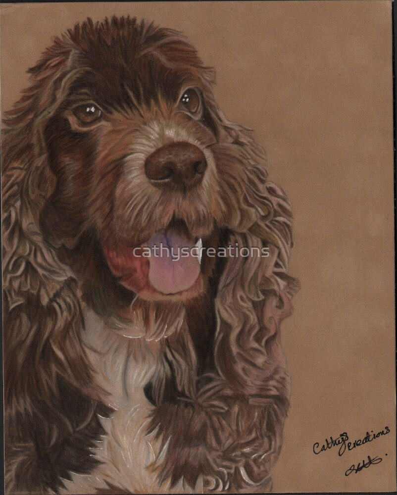 A brown Cockerspaniel by cathyscreations