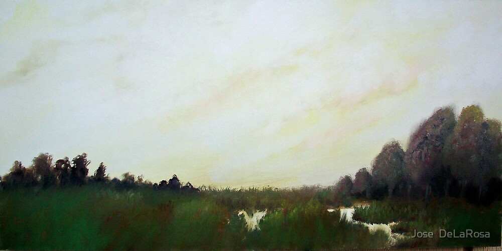 Marsh by Jose  DeLaRosa
