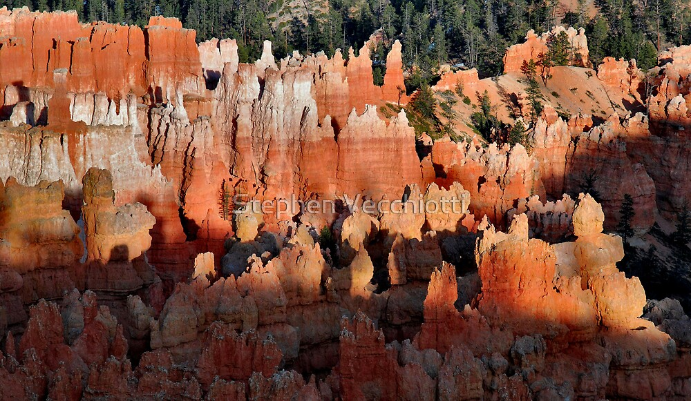 Hoodoos On Fire - Bryce Canyon by Stephen Vecchiotti