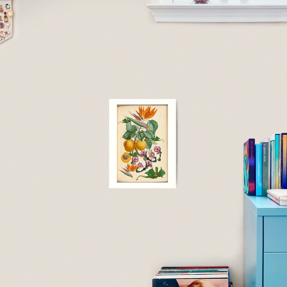 Apricot And Flowers With Dragons Art Print