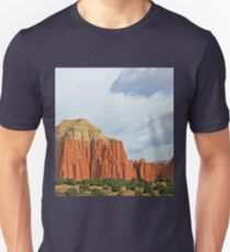 Cathedral Valley T-Shirt