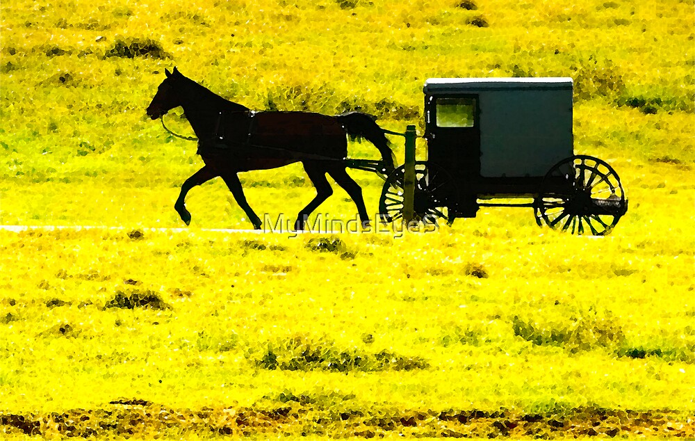 Buggy Rider © by Mary Campbell