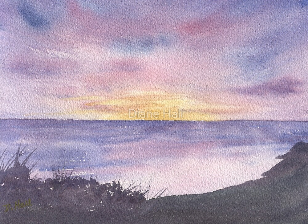 Pacific Sunset by Diane Hall