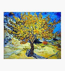 "Van Gogh ""The Mulberry Tree"", 1889 Photographic Print"
