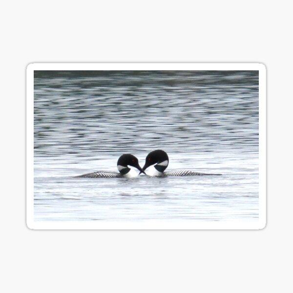 Loony Lovebirds Sticker