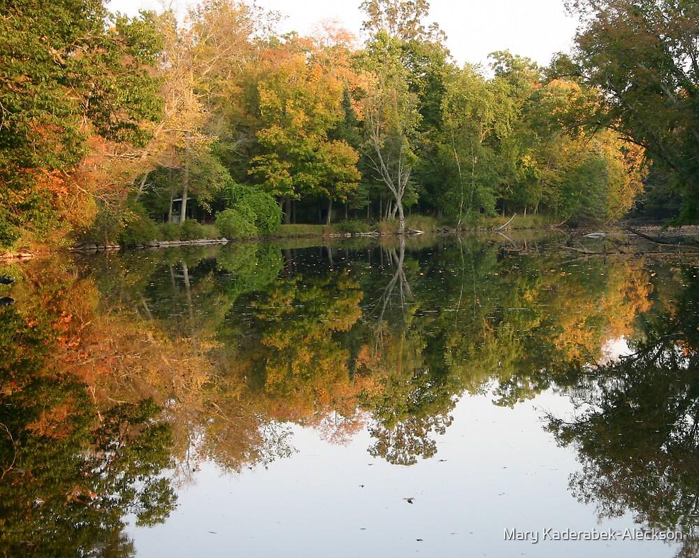 River Reflection by Mary Kaderabek-Aleckson