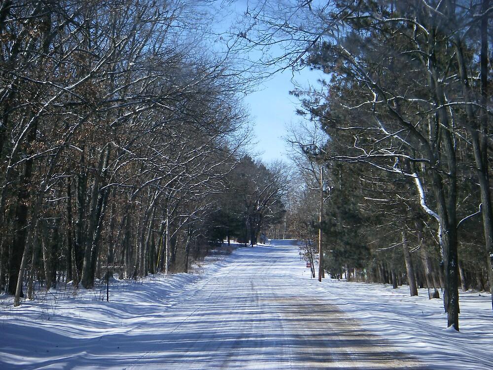 Winter Wonderland by KristiansKreati