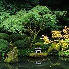 japanese garden 5 by Bruce  Dickson