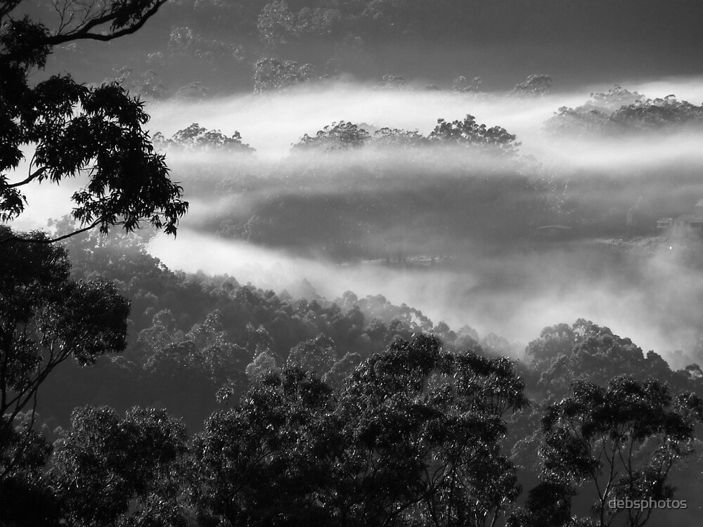 """""""Fog Ring"""" by debsphotos"""