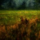 Summer Surrendering by RC deWinter