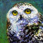 Prophecy: Snowy Owl by Rosemary Conroy