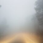 driving through mystery by Marianna Tankelevich