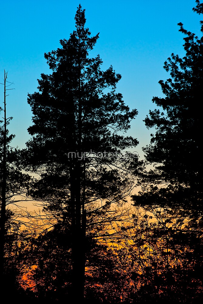 Garrett Silhouette by myphototype