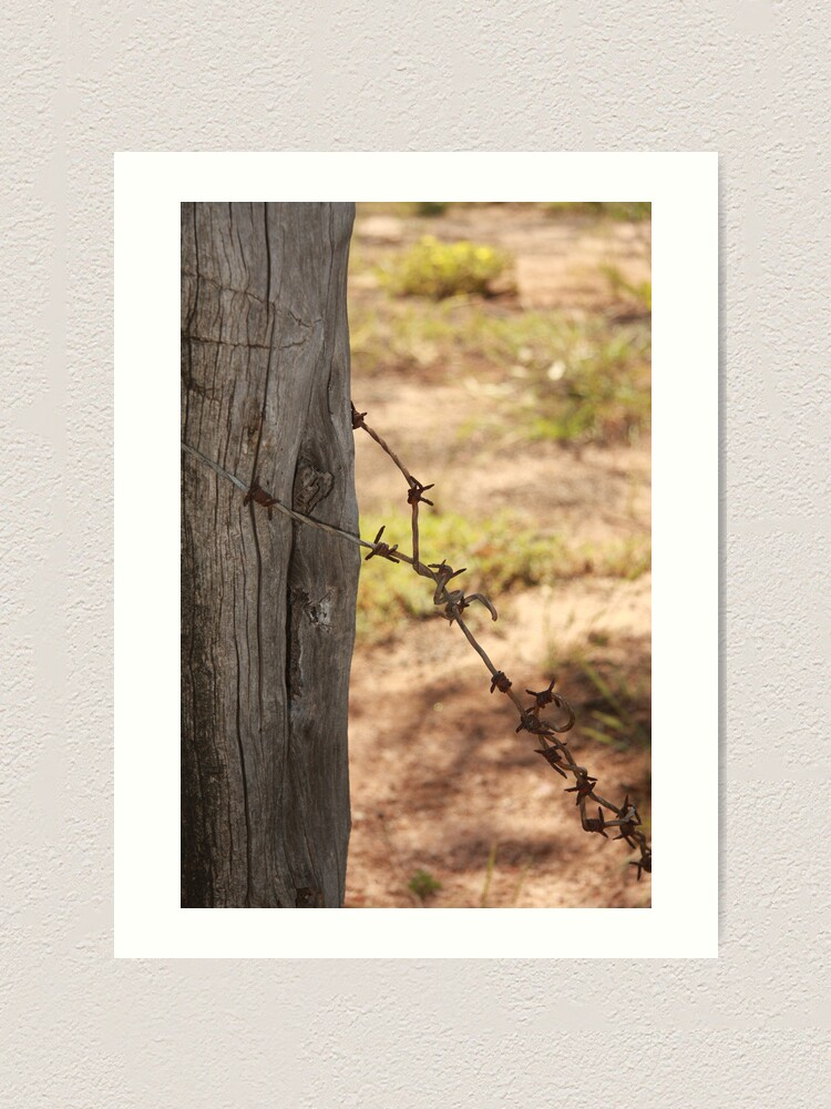 Alternate view of Old barbed wire Art Print