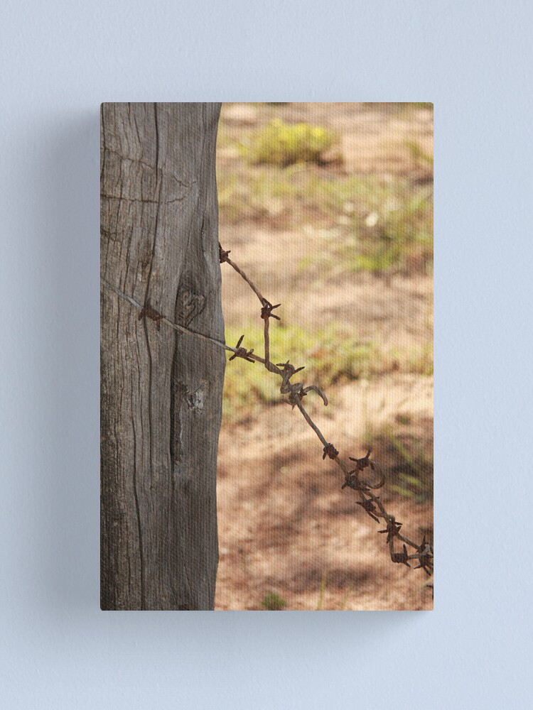 Alternate view of Old barbed wire Canvas Print