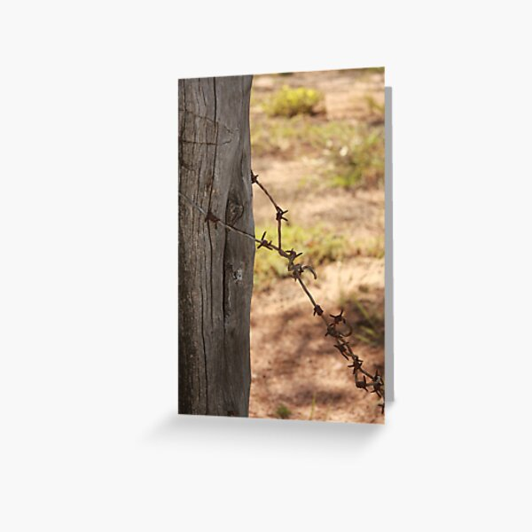Old barbed wire Greeting Card