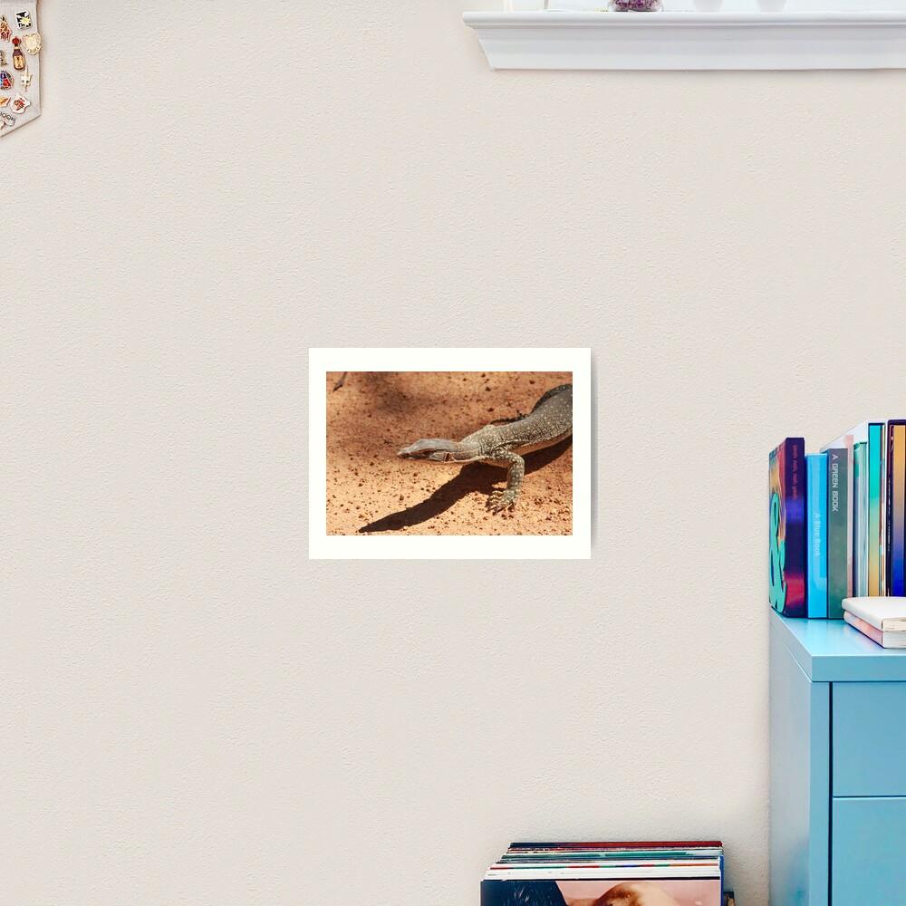 Sand goanna – Varanus gouldi Art Print