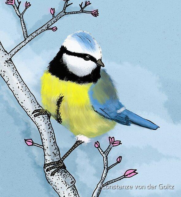 Kohlmeise - Alle Vögel sind schon da von Constanze von der Goltz