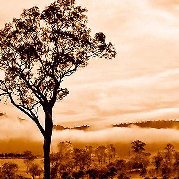 A low mist by rozmcq