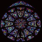 North Rose Window 1250 Cathedral Reims France 19840823 0018 by Fred Mitchell