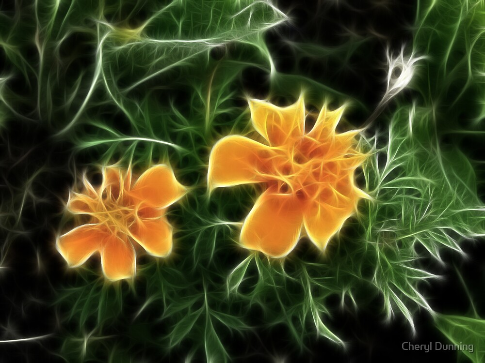 fractal flowers by Cheryl Dunning