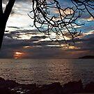 Dramatic Sunrise by myraj