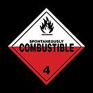 Spontaneously Combustible Warning Sign by Rupert Russell