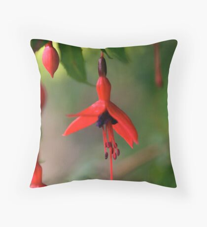Single Wild Fuchsia Flower, Loch Na Fooey Throw Pillow