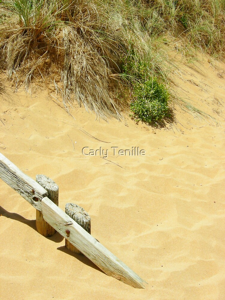 Shifting Sands by Carly Tenille